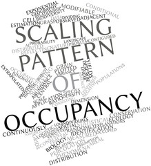 Word cloud for Scaling pattern of occupancy