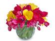 Букет тюльпанов на белом фоне крупным планом