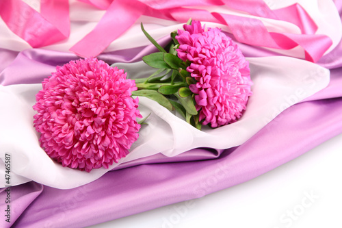beautiful aster flowers, on silk background