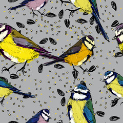 Titmouse / Seamless background with birds