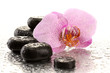 Spa stones and orchid flower, isolated on white.