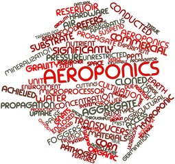 Word cloud for Aeroponics