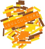 Word cloud for Aquaculture poster