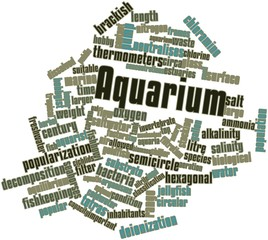 Word cloud for Aquarium