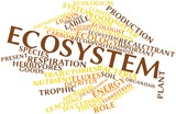 Word cloud for Ecosystem poster
