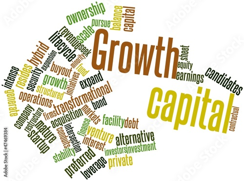 Word cloud for Growth capital