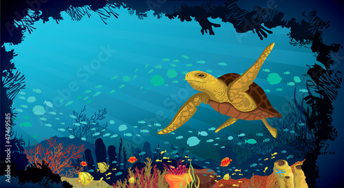Underwater life - Coral reef with turtle and fish