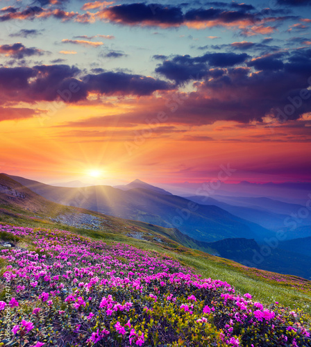 mountain landscape - 47471562