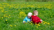 boy and small girl  on meadow with dandelion