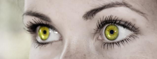 Yellow Eye - Beautiful, Feminine