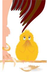 Цыпленок и птица