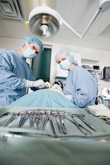 Veterinarian Doctors Performing Surgery At Clinic
