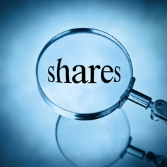 magnify shares