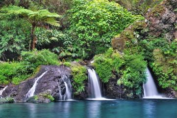 Cascade verdoyante à Langevin, La Réunion.