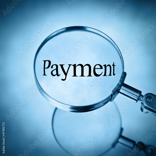 magnify payment