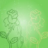 Vector roses background