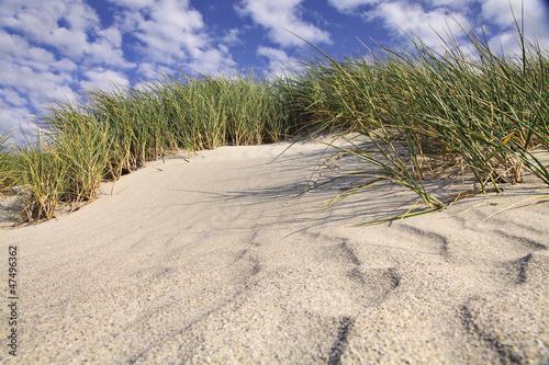 Fototapeten,sanddünen,north sea,ostsee,sanddünen