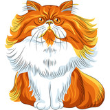 Vector color sketch fluffy Persian cat