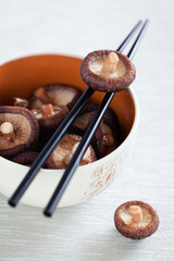 Soaked shiitake mushrooms in bowl, selective focus