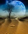 3D Desert