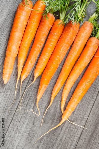 Biological carrots