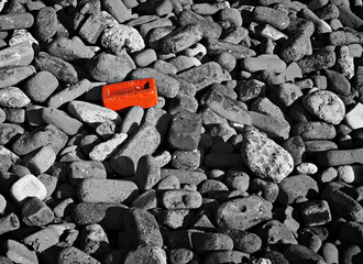 Single red brick amongst lots of monochrome bricks