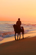 Lonely horse rider on beach