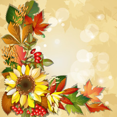 Autumn background with sunflower and place for text.