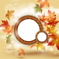 Autumn leaves falling on bright background and place for text.