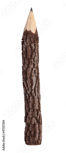 Pencil in the form of a tree trunk