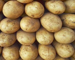 raw potatoes, natural background