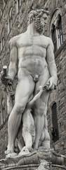 Fuente de Neptuno (Plaza de la Signoria,Florencia)