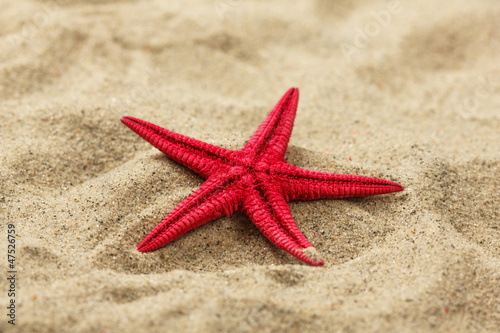 Close-up of a red starfish on beach sand pattern