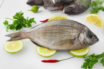 Dorada, pescado blanco, fresco.
