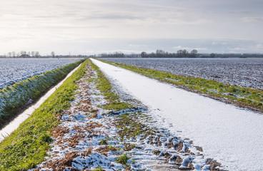 Dutch countryside in winter