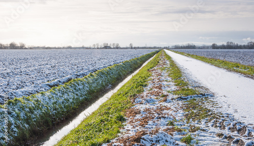 Dutch countryside in winter