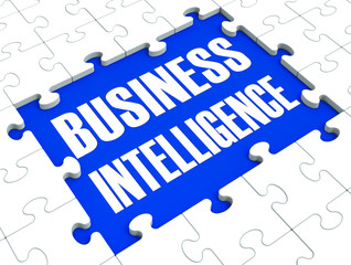 Business Intelligence Puzzle Shows Company's Opportunities