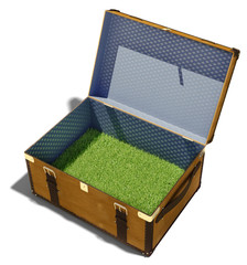 meadow in suitcase