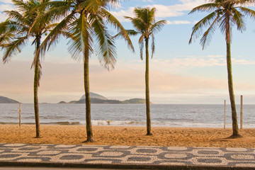 Palmeiras e Praia de Ipanema