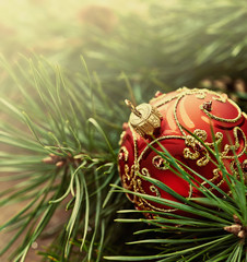 Red christmas ball and pine twigs