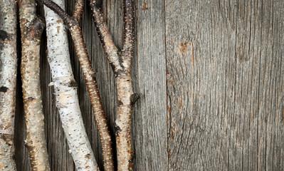 Birch trees background