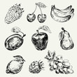 Set of fruits. Freehand drawing. Vector illustration