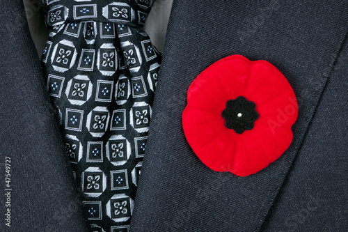 Remembrance Day poppy on suit - 47549727