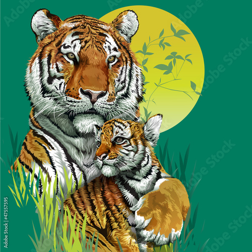 Tiger family in jungle. Vector illustration