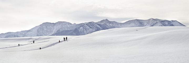 winter idylle in miesbach mit alpenblick
