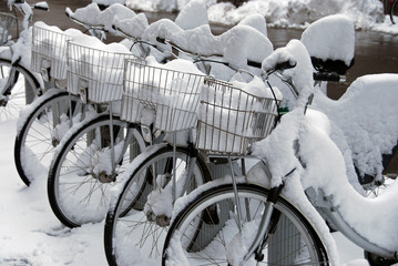 Rent a bike in snow