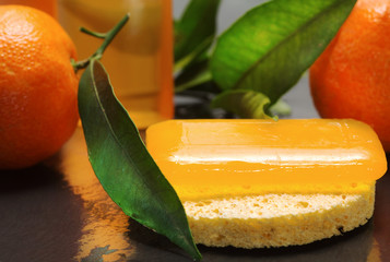 citrus bar of soap with fresch clementines