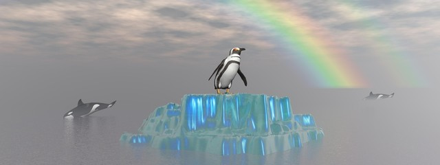 orca and penguin