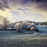 Fototapety a winter morning with a beautiful sunrise - frozen landscape