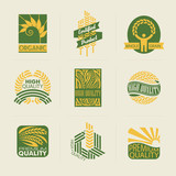 Wheat labels and badges. Set of logo templates